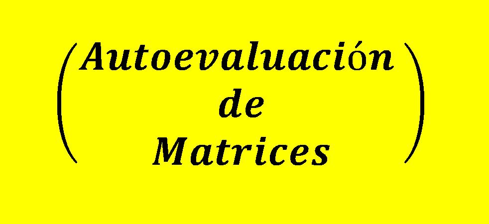 autoevaluacion de matrices
